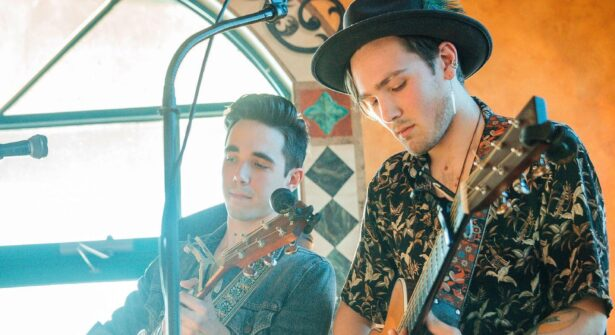 June 11th: Live at The Vista with The Ende Brothers